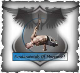 Fundamentals Of Movement
